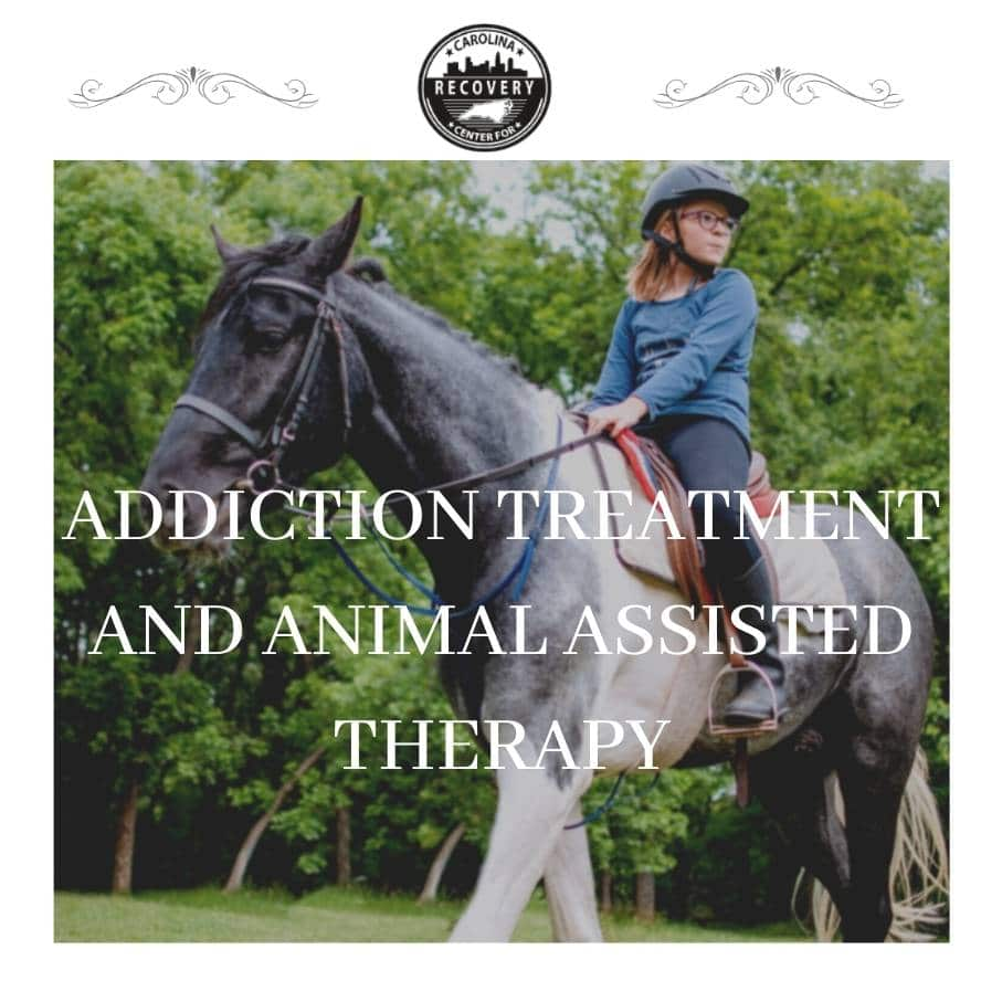 Addiction Treatment and Animal-Assisted Therapy